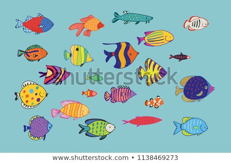 Collection of various marine animal doodles Stock photo © adrian_n