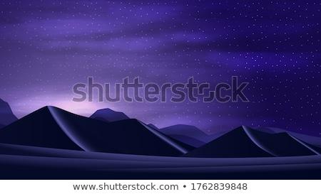 desert and the starry sky Stock photo © OleksandrO