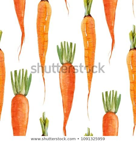 havuç · sebze · vektör · turuncu · havuç - stok fotoğraf © balasoiu