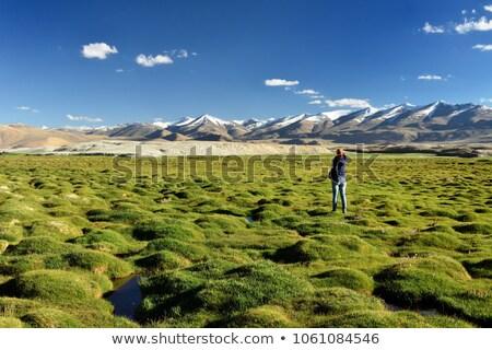 secar · lago · India · valle · paisaje · montana - foto stock © alexeys
