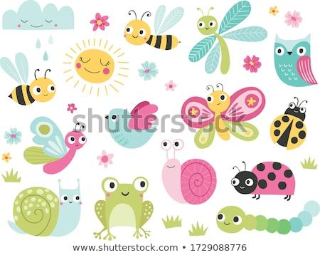 Сток-фото: лягушка · луговой · насекомые · лет · природы · икона