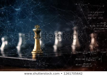 Foto stock: ícone · global · xadrez · jogo · mundo · forma