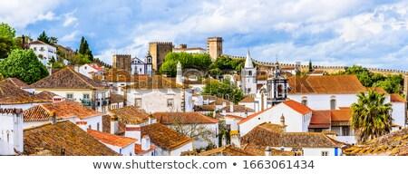 старый город Португалия центр Церкви путешествия замок Сток-фото © benkrut