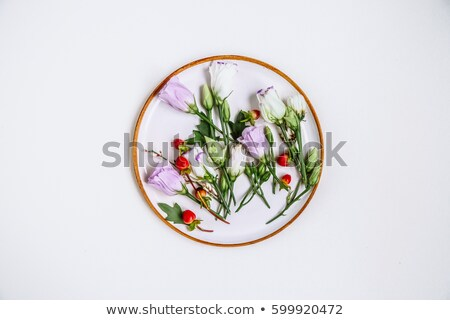 Lovely unique flower in circular clay plate on white background. Stock photo © Leonidtit