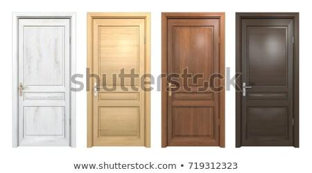Old style wooden door Stock photo © MichaelVorobiev