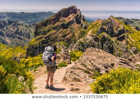 Emberek Madeira sziget sétál felső hegyek Stock fotó © compuinfoto