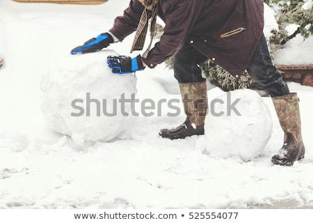 Palla di neve cartoon dimensioni ghiaccio Foto d'archivio © blamb