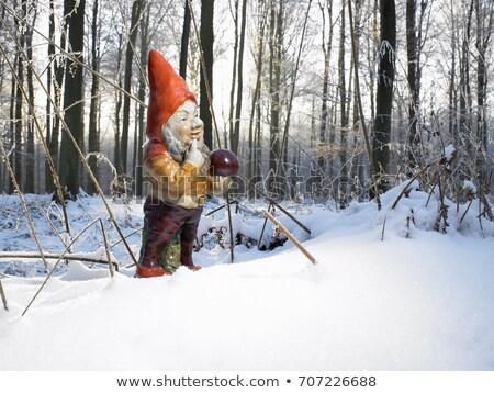 саду гном лесу снега лес зима Сток-фото © IS2