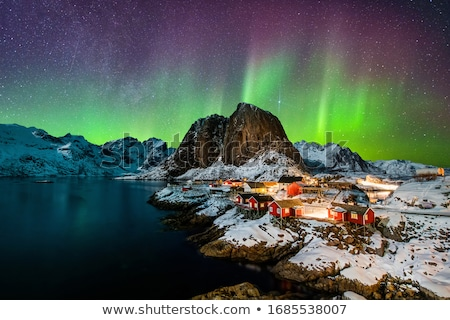 Winter landscape with northern lights Stock photo © Sonya_illustrations
