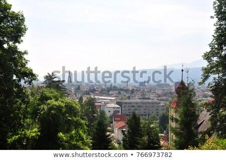Vista Austria viaje arquitectura ciudad turismo Foto stock © rbiedermann