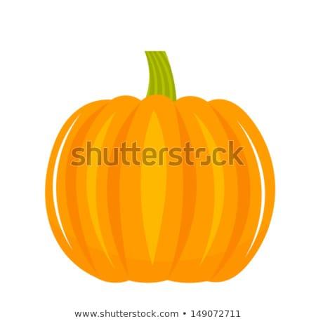 Naranja calabaza hortalizas Cartoon dibujo simple Foto stock © hittoon