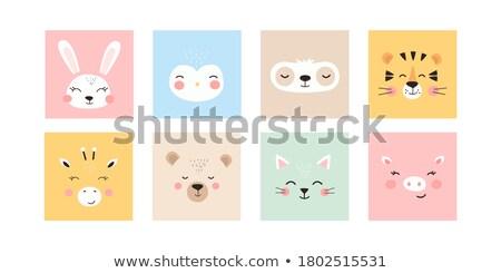 Animal Set Portrait In Flat Graphics - Bear Stock photo © Mr.Good