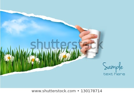 green grass and ripped paper border stock photo © adamson