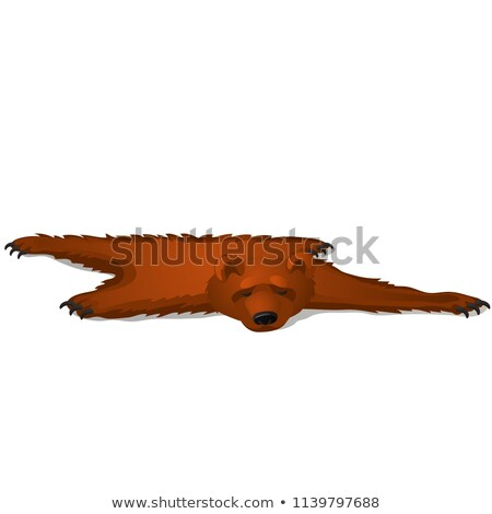 Brown bear skin isolated on white background. Vector cartoon close-up illustration. Stock photo © Lady-Luck