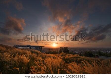 blue twilight rural landscape stock photo © simply