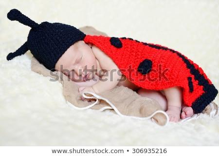 Alszik kicsi bogár rajz illusztráció boldog Stock fotó © cthoman