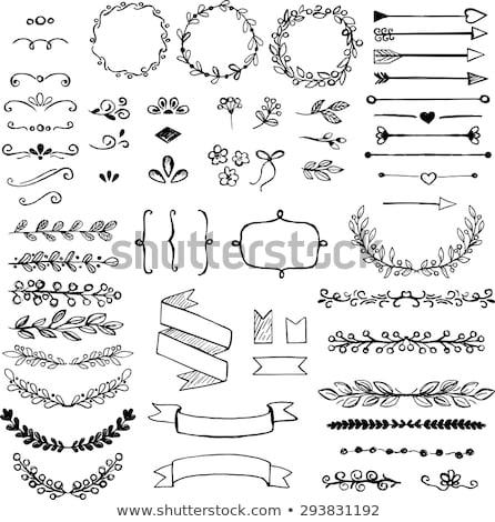 conjunto · decorativo · elementos · preto · e · branco · simples - foto stock © Vanzyst
