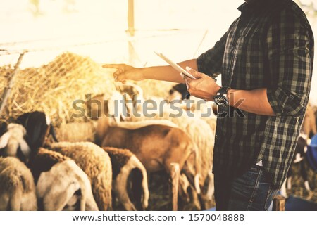 Stock photo: Farmer Taking Care of Plants and Animals on Farm