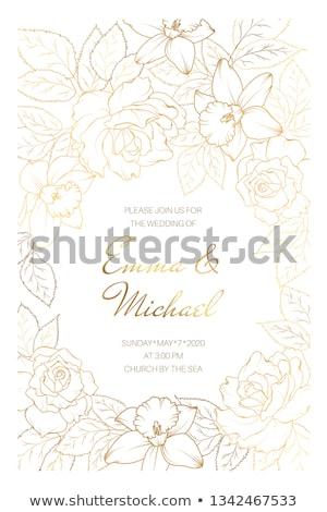 çerçeve şablon nergis çiçekler örnek çiçek Stok fotoğraf © colematt
