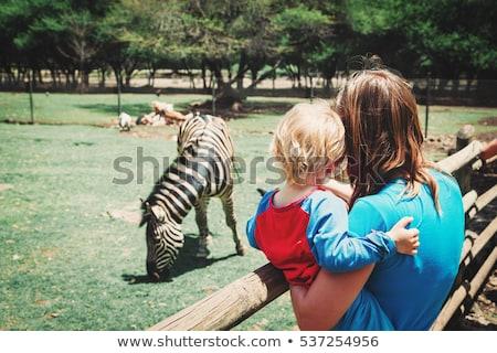 Fiú külső állatok állatkert gyerekek lány Stock fotó © galitskaya