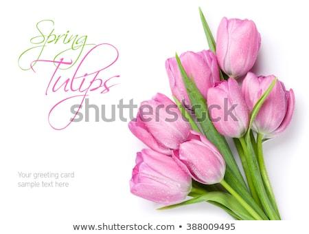 イースター · 春 · チューリップ · 花 · 白 · 花瓶 - ストックフォト © karandaev