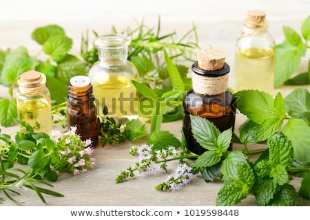 A bottle of marjoram essential oil with fresh marjoram Stock photo © madeleine_steinbach