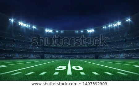 Piłka nożna stadion biały zespołu piłka nożna noc Zdjęcia stock © georgejmclittle