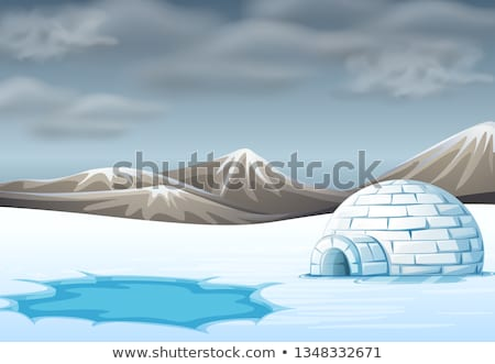 igloo in cold terrain Stock photo © bluering