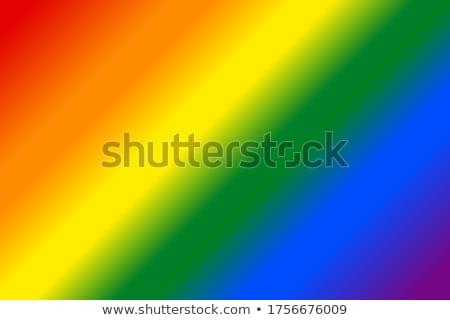 Lesbische vlag rechthoekig vorm icon nieuwe Stockfoto © Ecelop