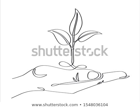 Hand Planting Tree Seedling Continuous Line Stock photo © patrimonio