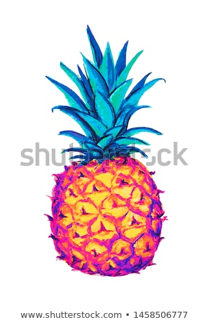 pineapple icon tropical exotic fruit shape pattern pineapple hand drawn watercolor vector graphics stock photo © essl