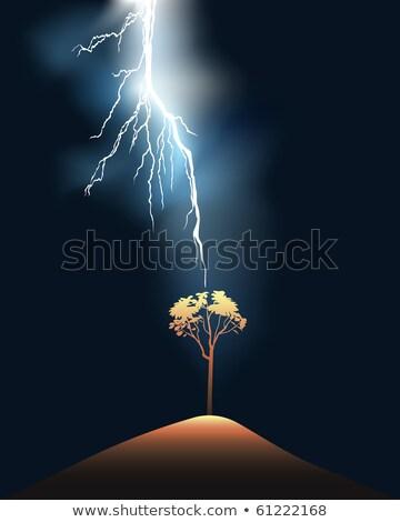 eenzaam · boom · groene · veld · lagen · vector - stockfoto © mayboro