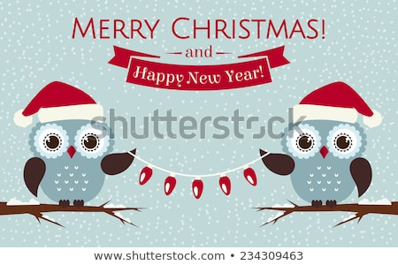 funny owl cartoon on christmas banner . christmas background stock photo © doomko