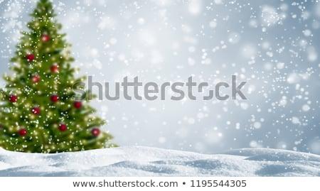 Chutes de neige vert fond hiver vacances Photo stock © romvo