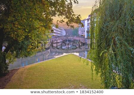 Rivier regio Duitsland gebouw stad Stockfoto © xbrchx