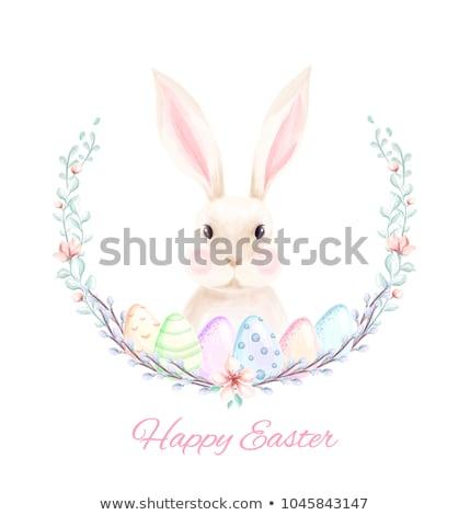 Vector Easter Rabbit Postcard Stock photo © dashadima