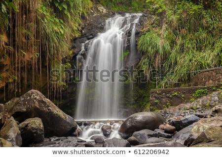 Grenada · water · reizen · vallen · stream · vallen - stockfoto © phbcz
