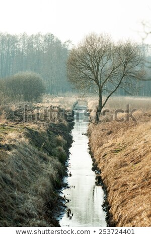 River and irrigation ditch through the bridge Stock photo © Ansonstock