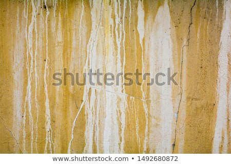 detail of white dripping paint leak on stone Stock photo © Melvin07
