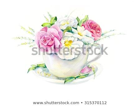 Pembe güller zarif çay fincanı bahçe sabah Stok fotoğraf © Julietphotography