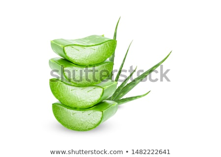 Background with aloe vera isolated on white Stock photo © aniriana