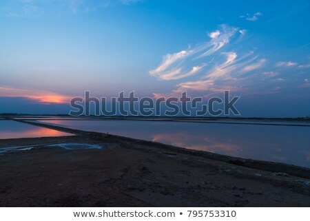 Cirrus at sunset Stock photo © Antonio-S