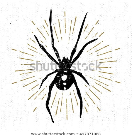 stamp with image of black widow Stock photo © perysty