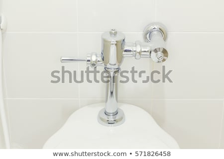 Urinate toilet bowl  Stock photo © JohnKasawa