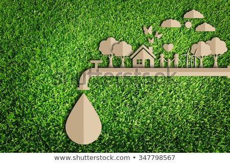окружающий · сохранение · сломанной · зеленый · бумаги - Сток-фото © idesign