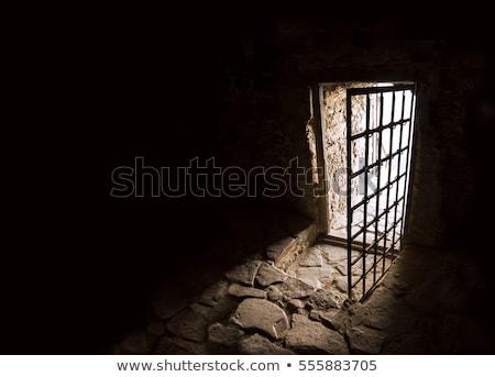 древних лестница дверей дворец стекла свет Сток-фото © franky242