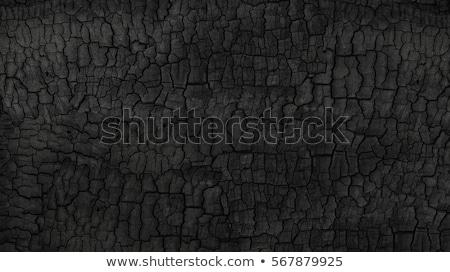 burnt wood stock photo © itobi