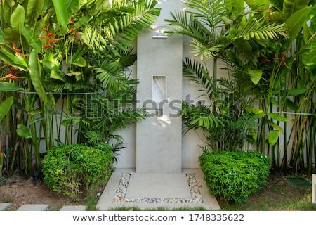 Открытый душу Насадка для душа кирпичная стена воды кирпичных Сток-фото © sframe
