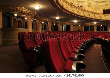 színház · szék · terv · koncert · konferencia · szövet - stock fotó © zzve