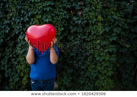 Almák föld űrlap szív fotók étel Stock fotó © maknt